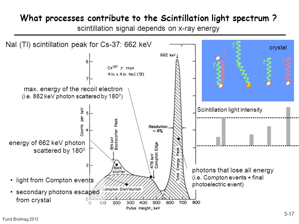 Fund BioImag 2013 5-17 What processes contribute to the Scintillation light spectrum .