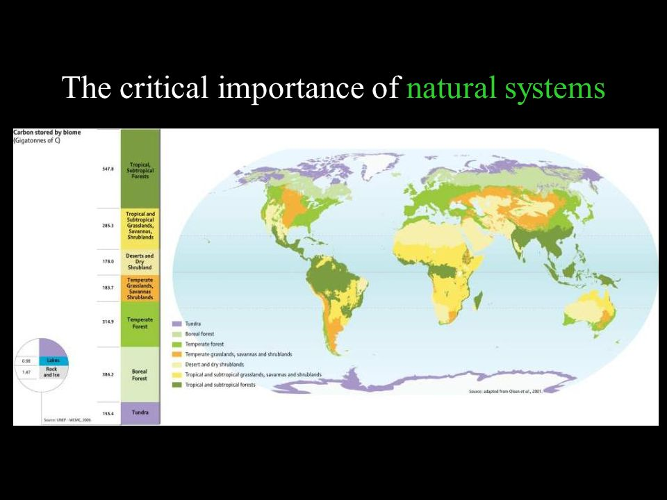 The critical importance of natural systems UNEP atlas of carbon stored by biome