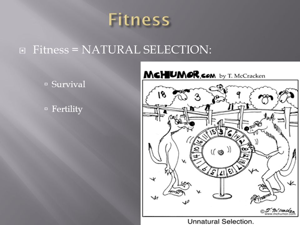 Fitness = NATURAL SELECTION: Survival Fertility