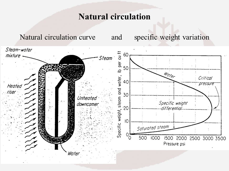 Natural circulation Natural circulation curve and specific weight variation
