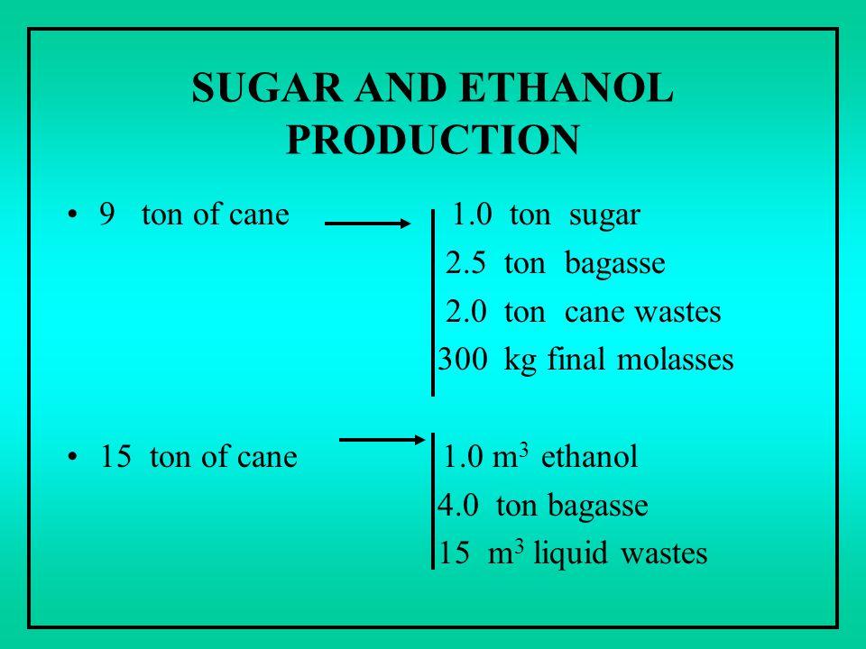 SUGAR AND ETHANOL PRODUCTION 9 ton of cane 1.0 ton sugar 2.5 ton bagasse 2.0 ton cane wastes 300 kg final molasses 15 ton of cane 1.0 m 3 ethanol 4.0