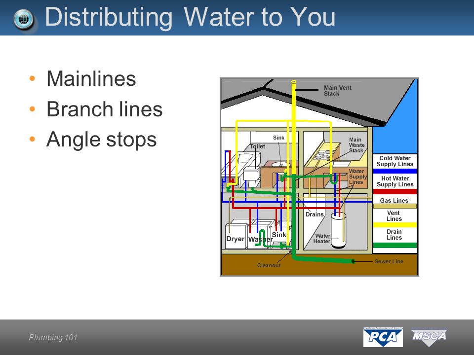 Plumbing 101 Distributing Water to You Mainlines Branch lines Angle stops