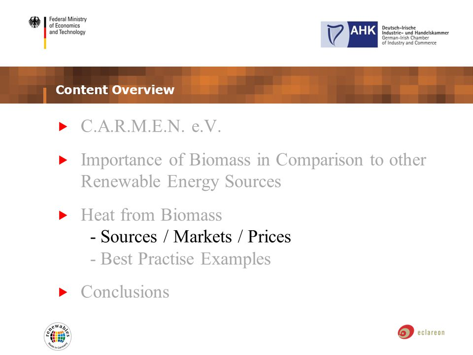 Content Overview C.A.R.M.E.N. e.V. Importance of Biomass in Comparison to other Renewable Energy Sources Heat from Biomass - Sources / Markets / Price