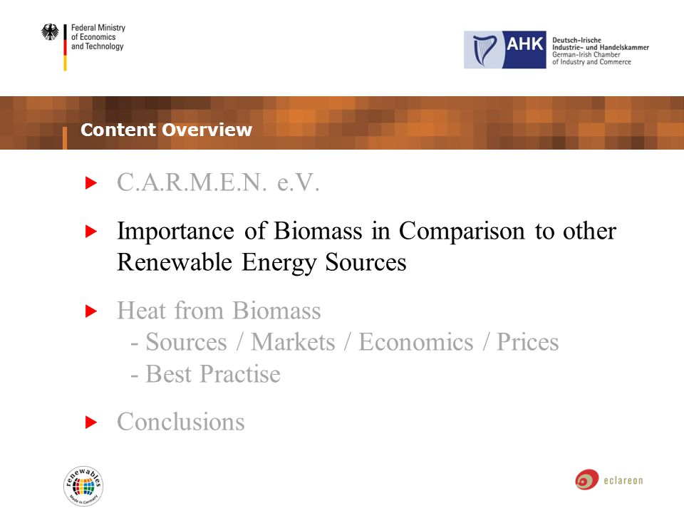 Content Overview C.A.R.M.E.N. e.V. Importance of Biomass in Comparison to other Renewable Energy Sources Heat from Biomass - Sources / Markets / Econo
