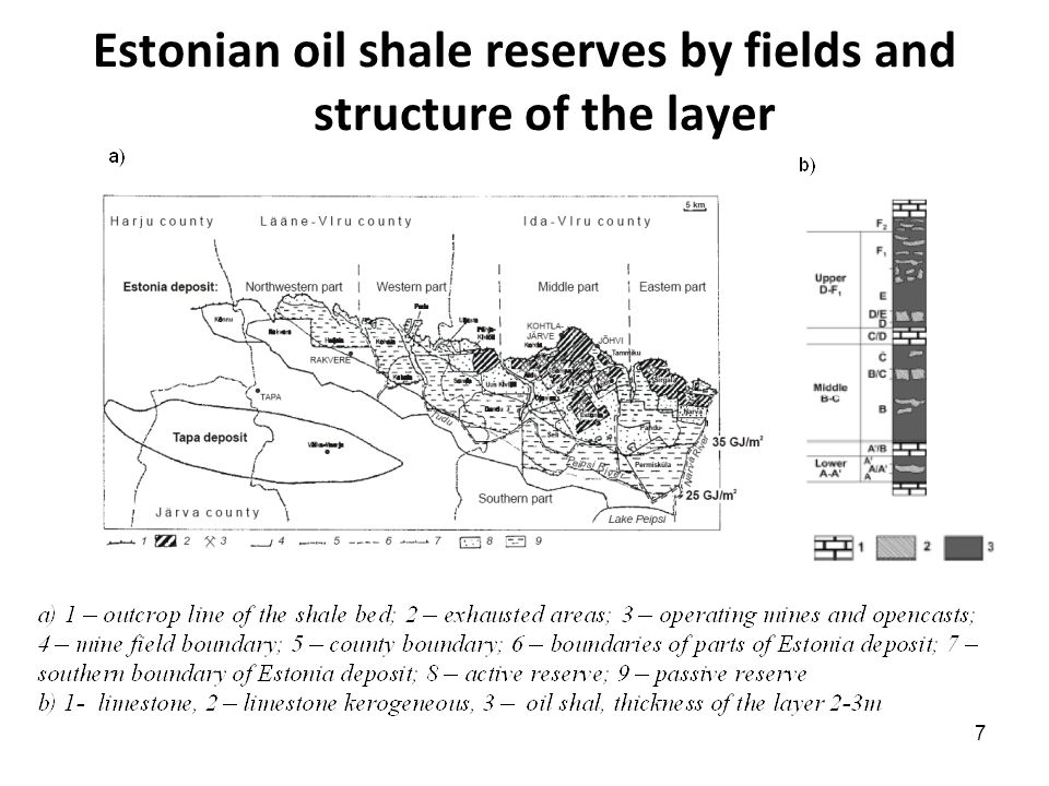 18 Huge oil shale resources in the world represent an important source for future energy supply 1.Oil Shale could be a useful part of an overall EU energy policy.