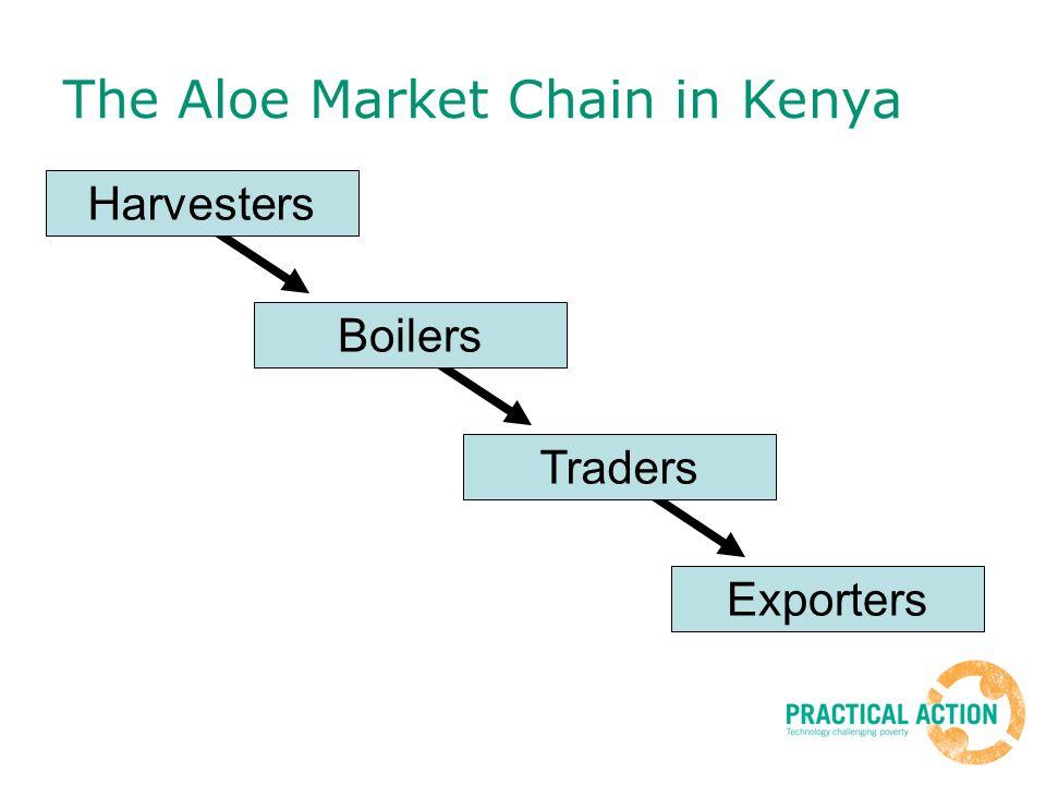 The Aloe Market Chain in Kenya Harvesters Boilers Traders Exporters