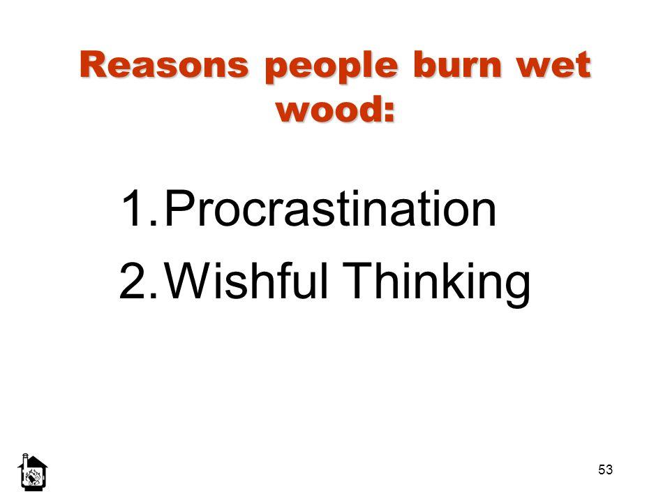 53 Reasons people burn wet wood: 1.Procrastination 2.Wishful Thinking