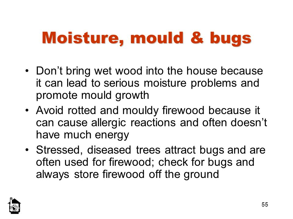 55 Moisture, mould & bugs Dont bring wet wood into the house because it can lead to serious moisture problems and promote mould growth Avoid rotted an