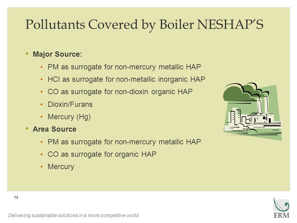 Delivering sustainable solutions in a more competitive world 12 Pollutants Covered by Boiler NESHAPS Major Source: PM as surrogate for non-mercury met