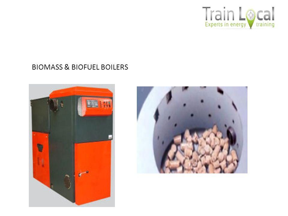 BIOMASS & BIOFUEL BOILERS