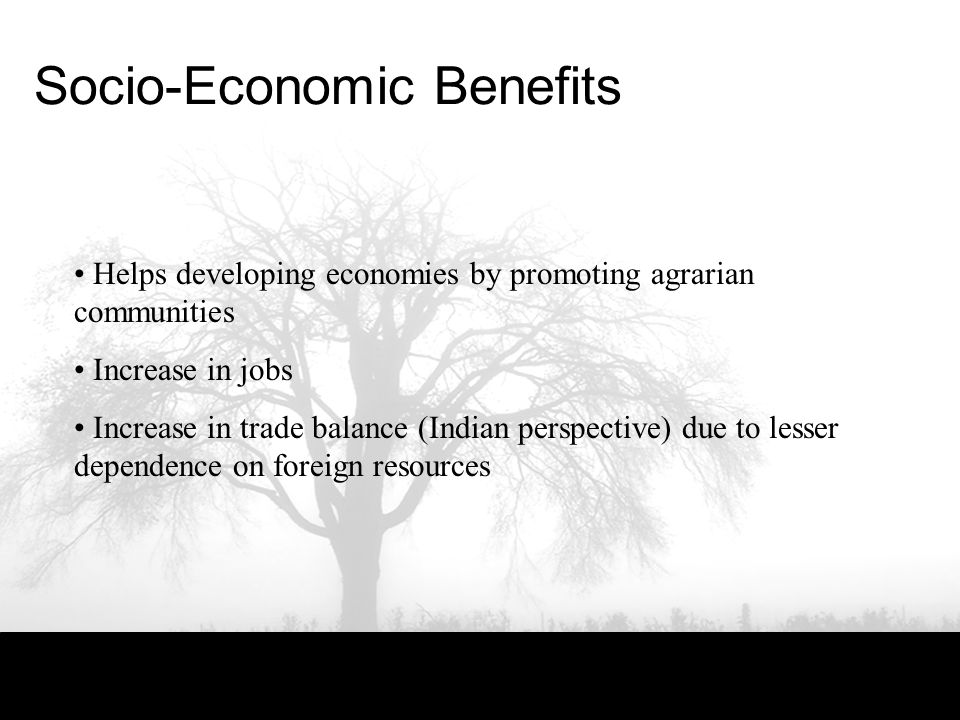 Socio-Economic Benefits Helps developing economies by promoting agrarian communities Increase in jobs Increase in trade balance (Indian perspective) due to lesser dependence on foreign resources