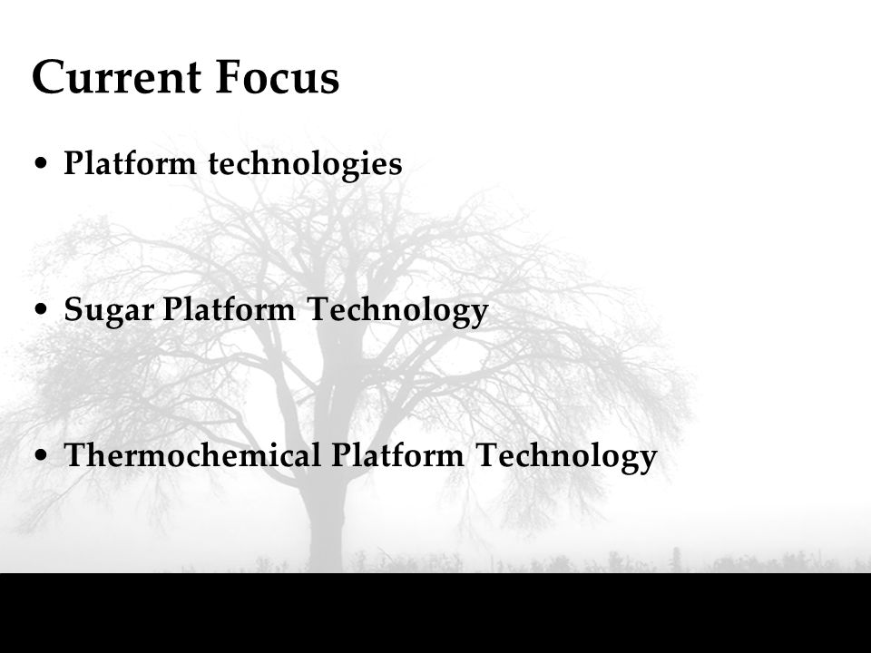 Current Focus Platform technologies Sugar Platform Technology Thermochemical Platform Technology