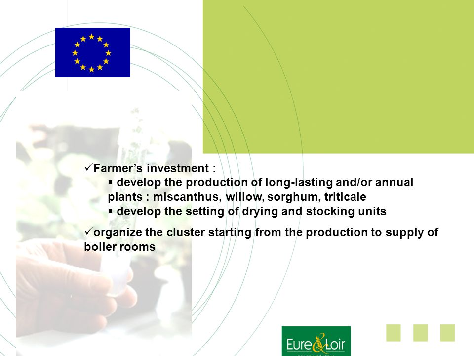 Farmers investment : develop the production of long-lasting and/or annual plants : miscanthus, willow, sorghum, triticale develop the setting of drying and stocking units organize the cluster starting from the production to supply of boiler rooms