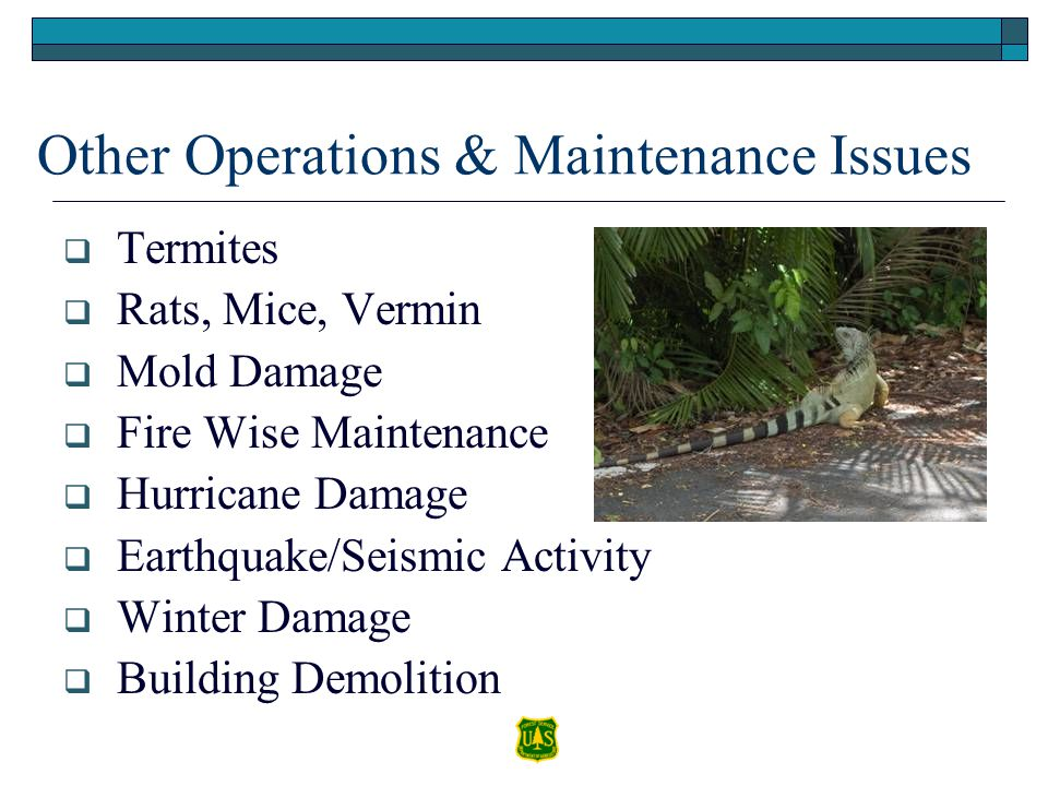 Other Operations & Maintenance Issues Termites Rats, Mice, Vermin Mold Damage Fire Wise Maintenance Hurricane Damage Earthquake/Seismic Activity Winte