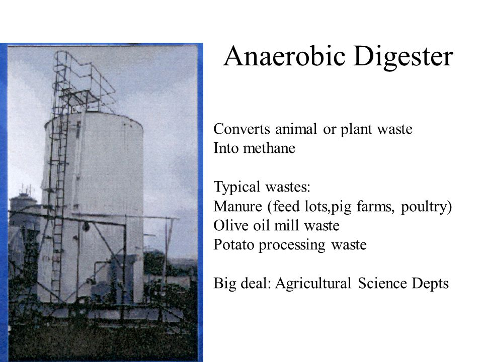 Anaerobic Digester Converts animal or plant waste Into methane Typical wastes: Manure (feed lots,pig farms, poultry) Olive oil mill waste Potato processing waste Big deal: Agricultural Science Depts