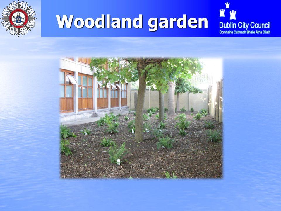 Woodland garden Woodland garden