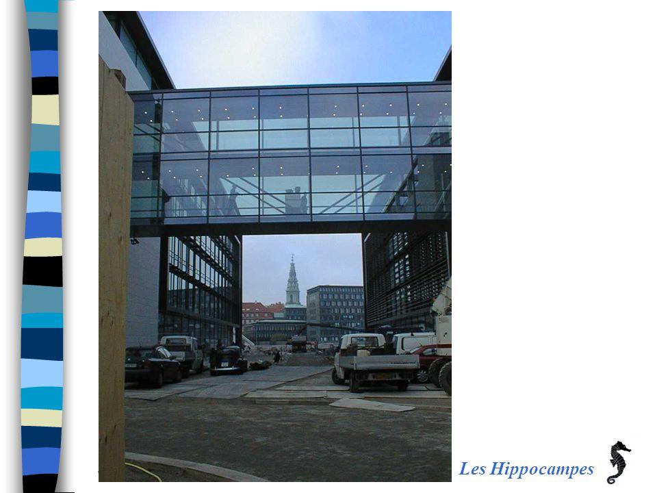 Les Hippocampes JHL / Jens H Laustsen – April 2006