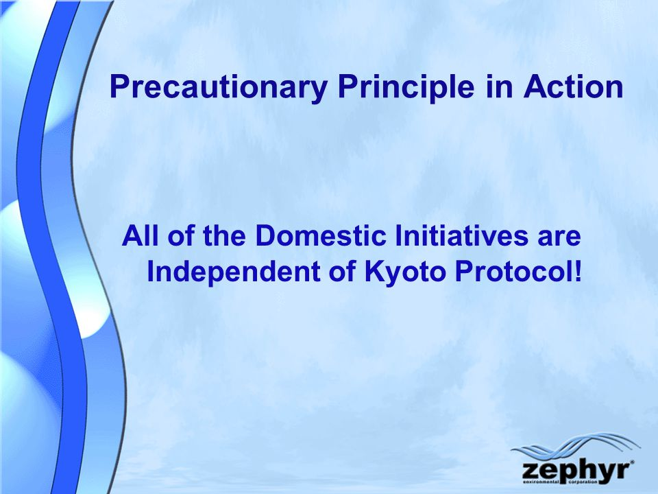 Precautionary Principle in Action All of the Domestic Initiatives are Independent of Kyoto Protocol!