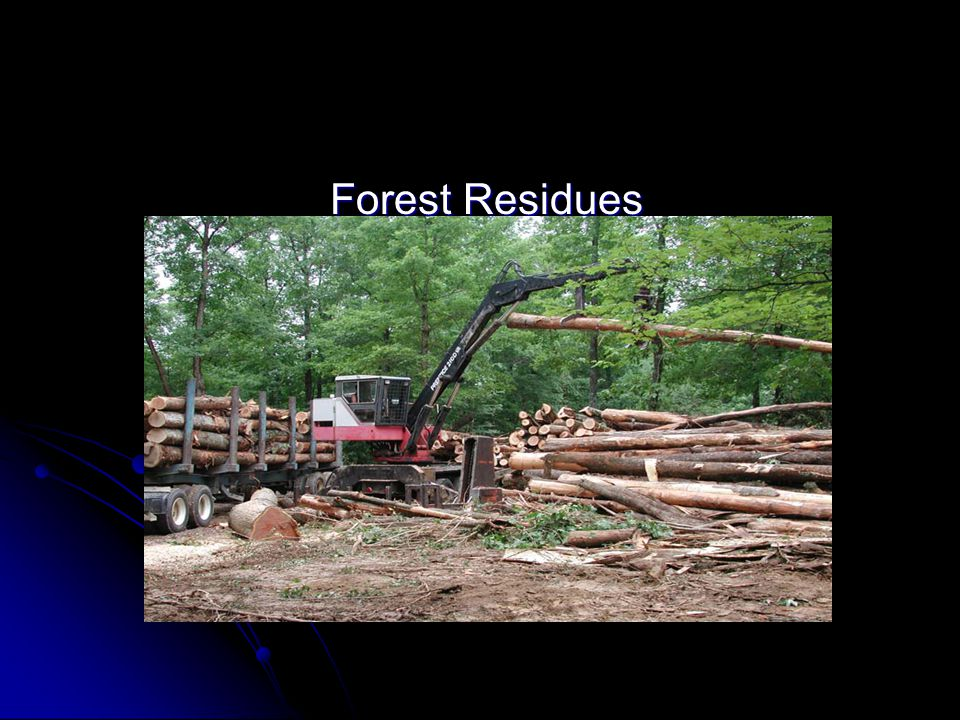 Forest Residues Forest Residues
