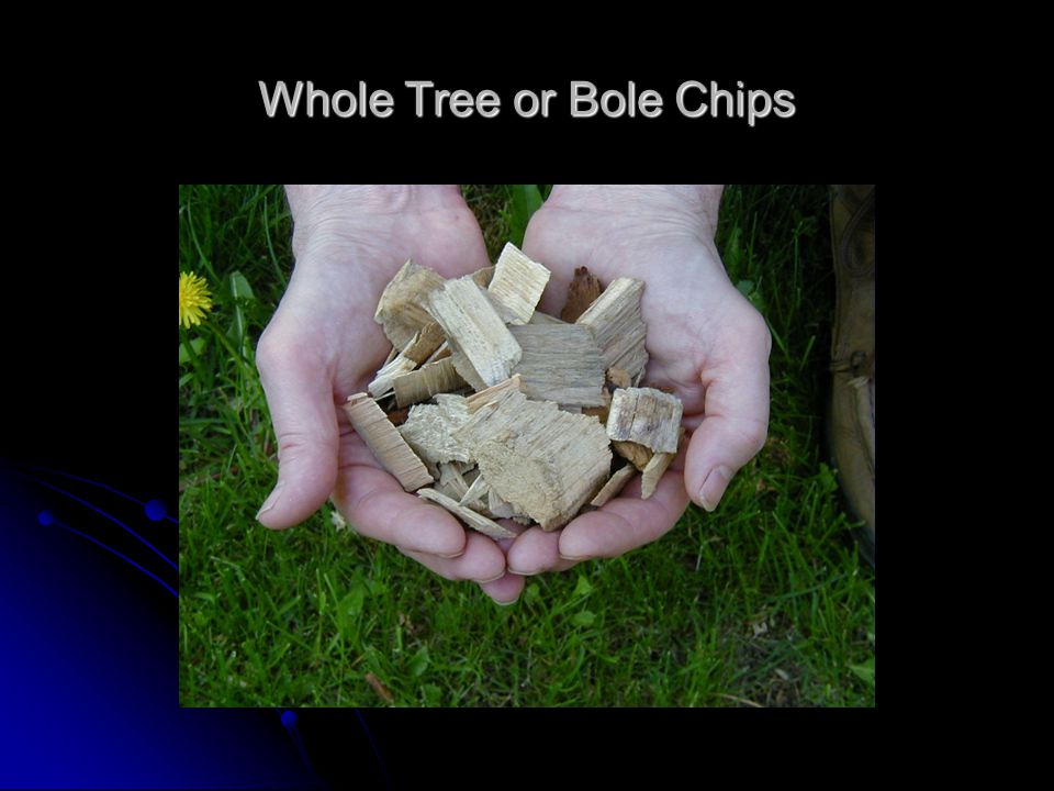 Whole Tree or Bole Chips