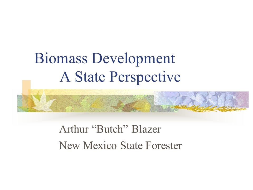 Biomass Development A State Perspective Arthur Butch Blazer New Mexico State Forester