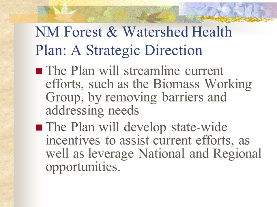 NM Forest & Watershed Health Plan: A Strategic Direction The Plan will streamline current efforts, such as the Biomass Working Group, by removing barr
