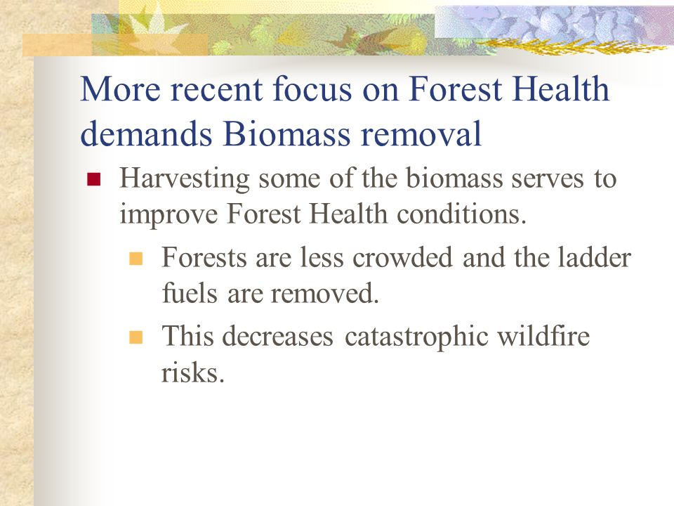 More recent focus on Forest Health demands Biomass removal Harvesting some of the biomass serves to improve Forest Health conditions. Forests are less