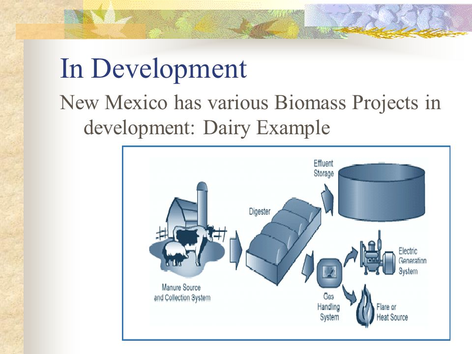 In Development New Mexico has various Biomass Projects in development: Dairy Example
