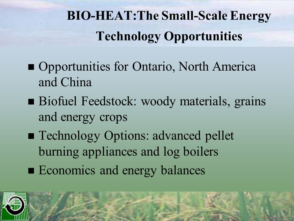 BIO-HEAT:The Small-Scale Energy Technology Opportunities Opportunities for Ontario, North America and China Biofuel Feedstock: woody materials, grains and energy crops Technology Options: advanced pellet burning appliances and log boilers Economics and energy balances