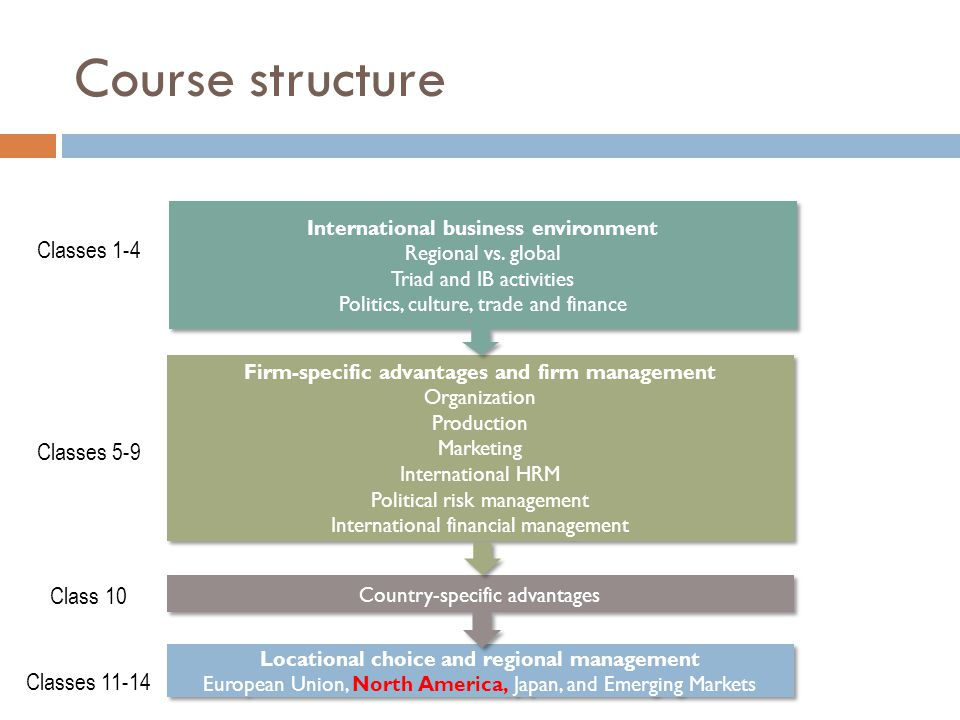 Country-specific advantages International business environment Regional vs.