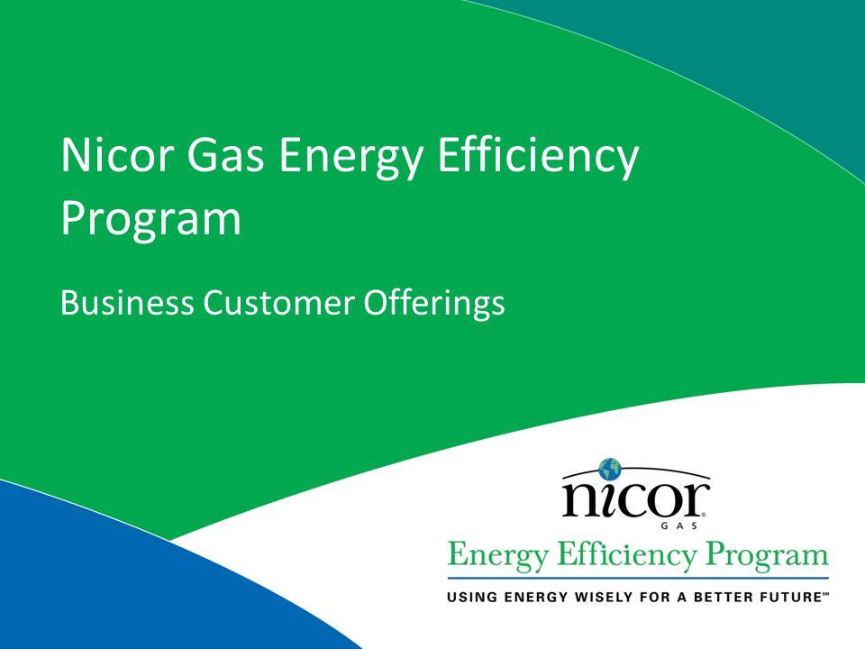 Nicor Gas Energy Efficiency Program Business Customer Offerings