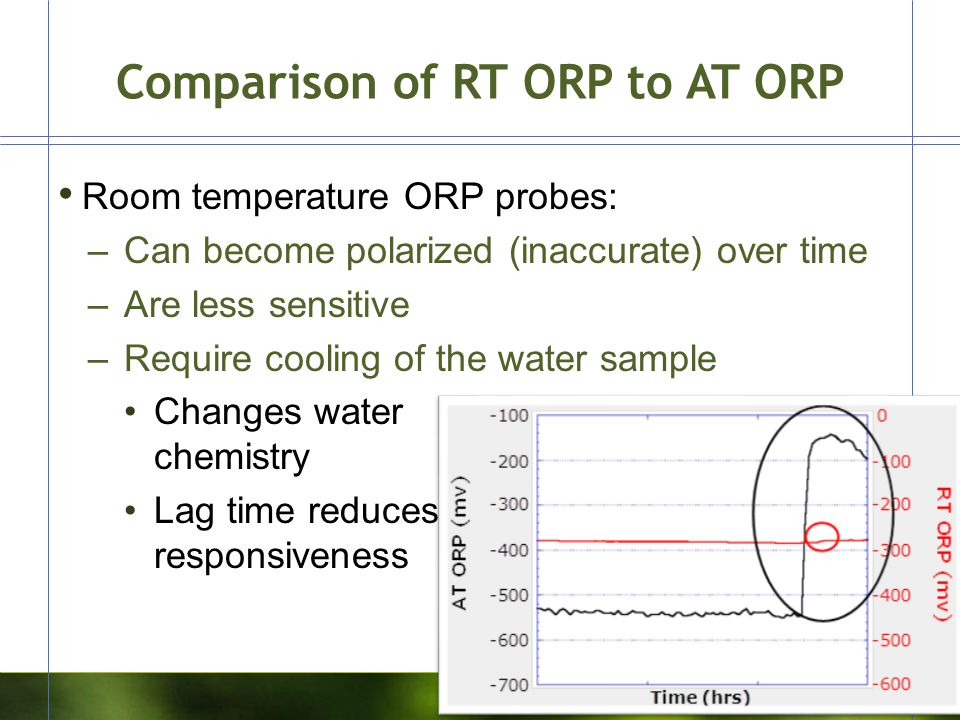Comparison of RT ORP to AT ORP Room temperature ORP probes: –Can become polarized (inaccurate) over time –Are less sensitive –Require cooling of the w