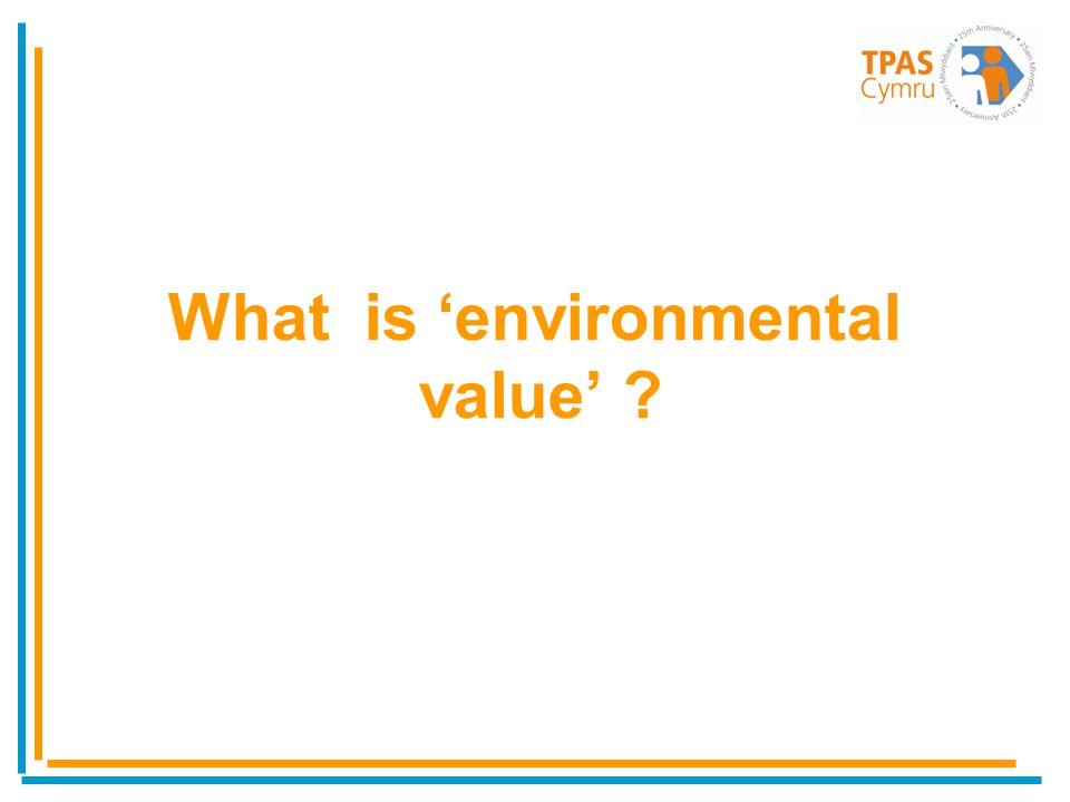 What is environmental value ?