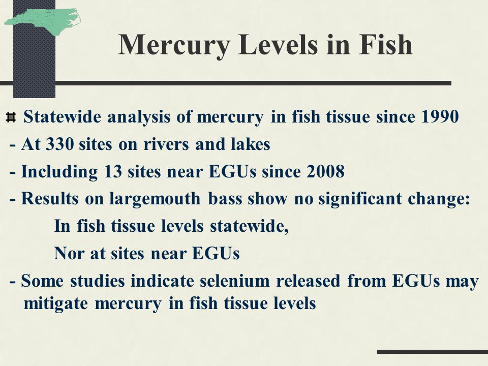 Mercury Levels in Fish Statewide analysis of mercury in fish tissue since 1990 - At 330 sites on rivers and lakes - Including 13 sites near EGUs since 2008 - Results on largemouth bass show no significant change: In fish tissue levels statewide, Nor at sites near EGUs - Some studies indicate selenium released from EGUs may mitigate mercury in fish tissue levels