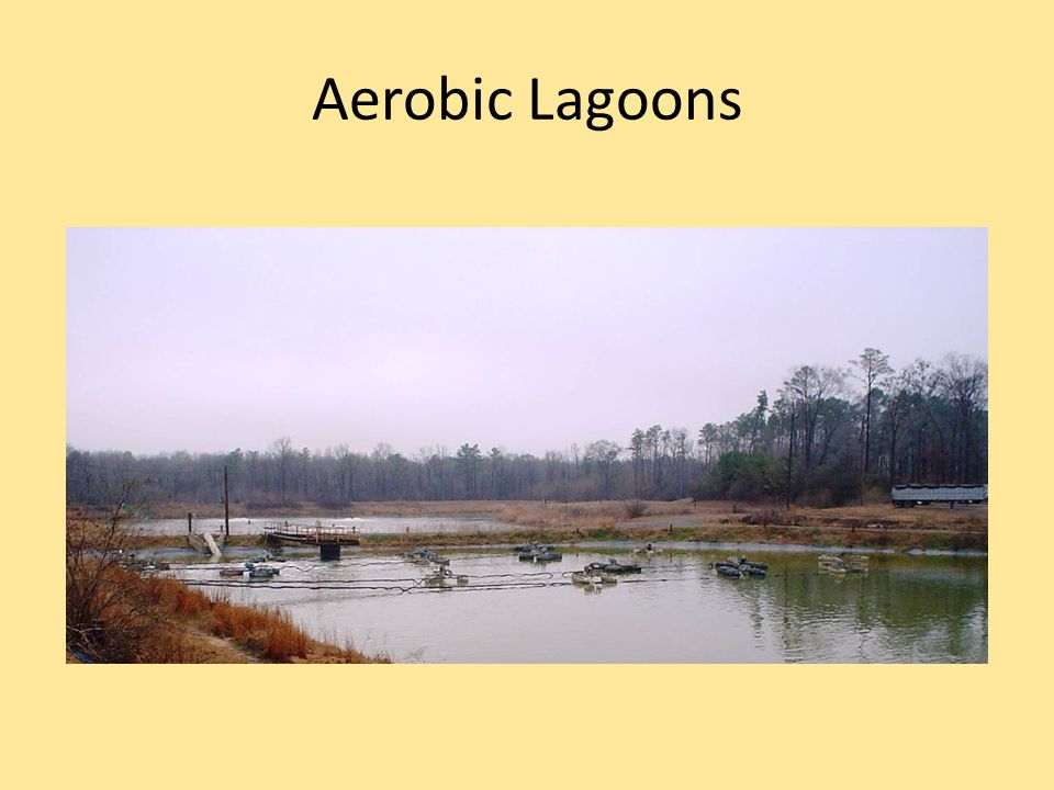 Aerobic Lagoons