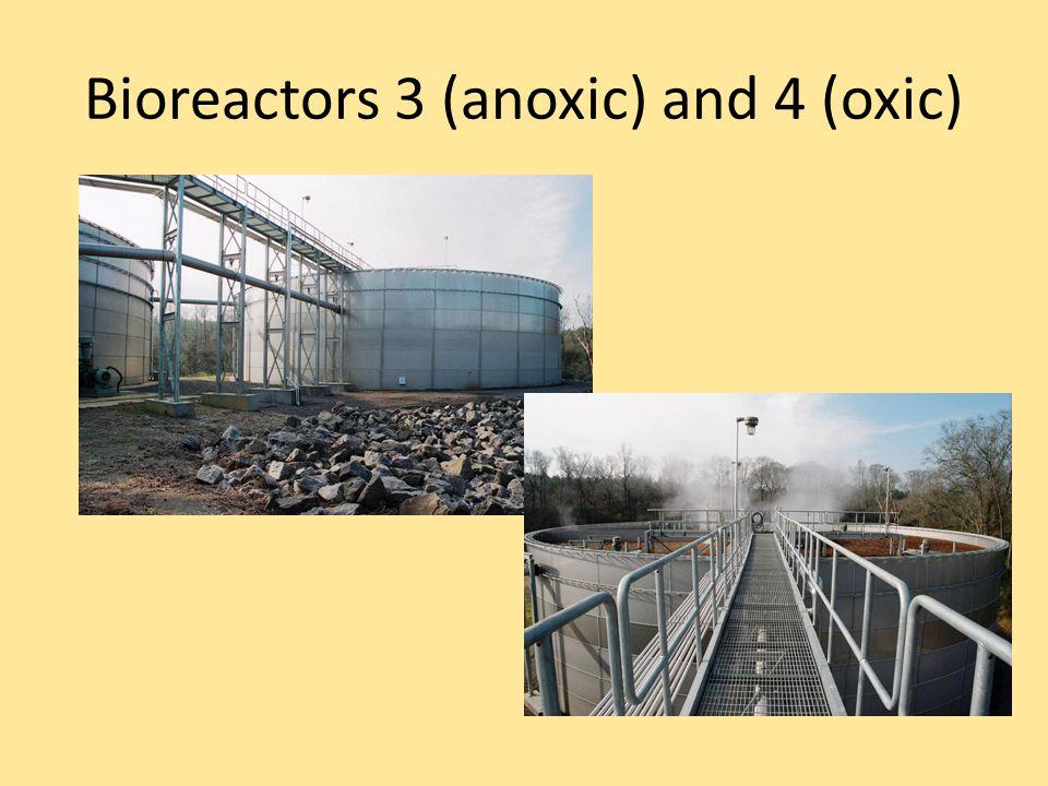 Bioreactors 3 (anoxic) and 4 (oxic)