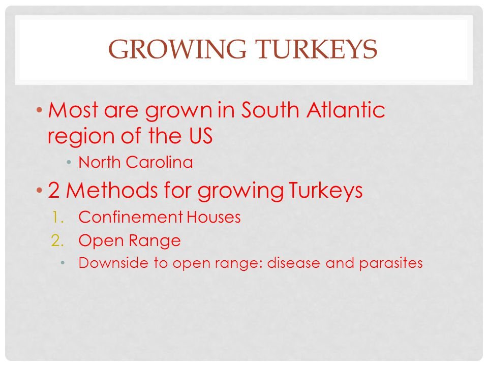 GROWING TURKEYS Most are grown in South Atlantic region of the US North Carolina 2 Methods for growing Turkeys 1.Confinement Houses 2.Open Range Downs