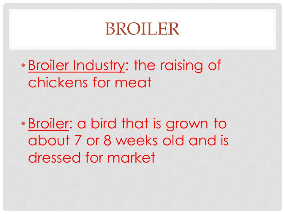 BROILER Broiler Industry: the raising of chickens for meat Broiler: a bird that is grown to about 7 or 8 weeks old and is dressed for market