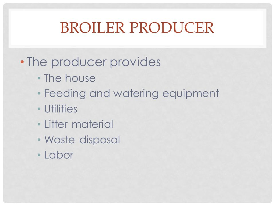 BROILER PRODUCER The producer provides The house Feeding and watering equipment Utilities Litter material Waste disposal Labor