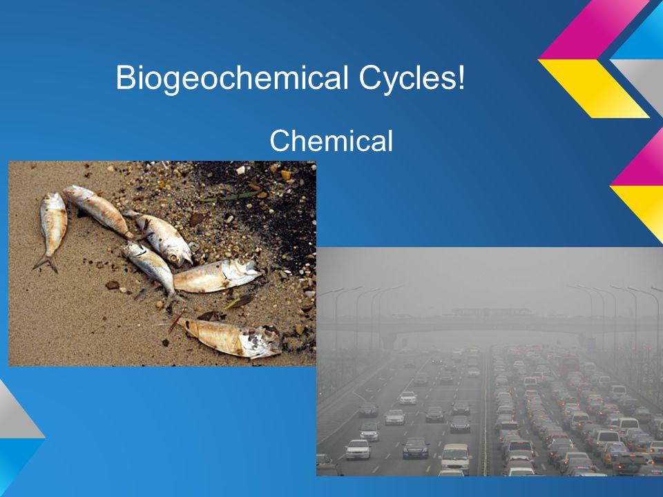 Biogeochemical Cycles! Chemical
