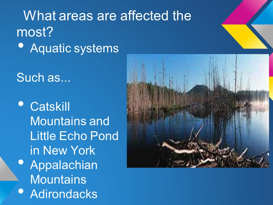 What areas are affected the most? Aquatic systems Such as... Catskill Mountains and Little Echo Pond in New York Appalachian Mountains Adirondacks
