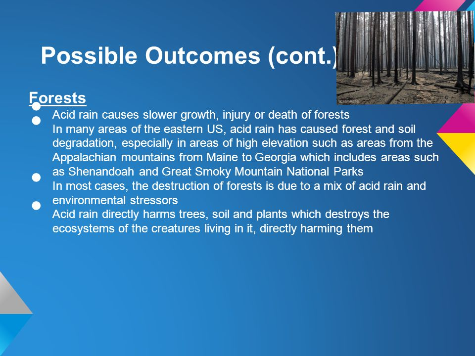 Possible Outcomes (cont.) Forests Acid rain causes slower growth, injury or death of forests In many areas of the eastern US, acid rain has caused for