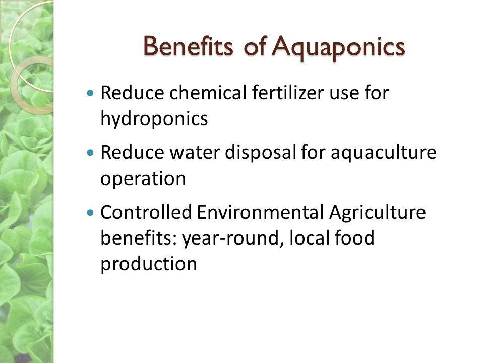 Benefits of Aquaponics Reduce chemical fertilizer use for hydroponics Reduce water disposal for aquaculture operation Controlled Environmental Agricul