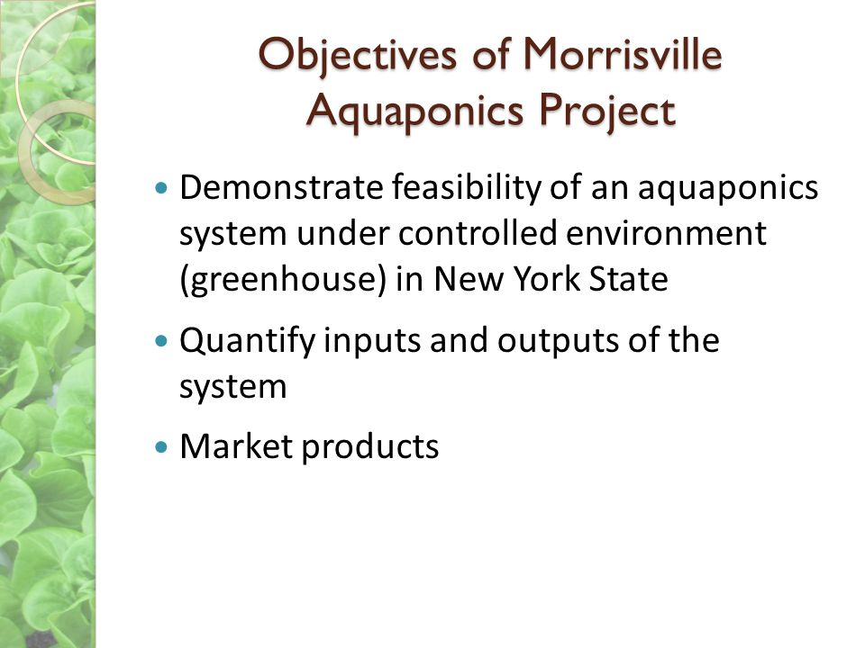 Objectives of Morrisville Aquaponics Project Demonstrate feasibility of an aquaponics system under controlled environment (greenhouse) in New York State Quantify inputs and outputs of the system Market products