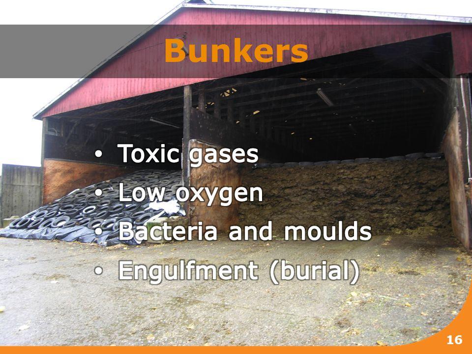 Bunkers 16