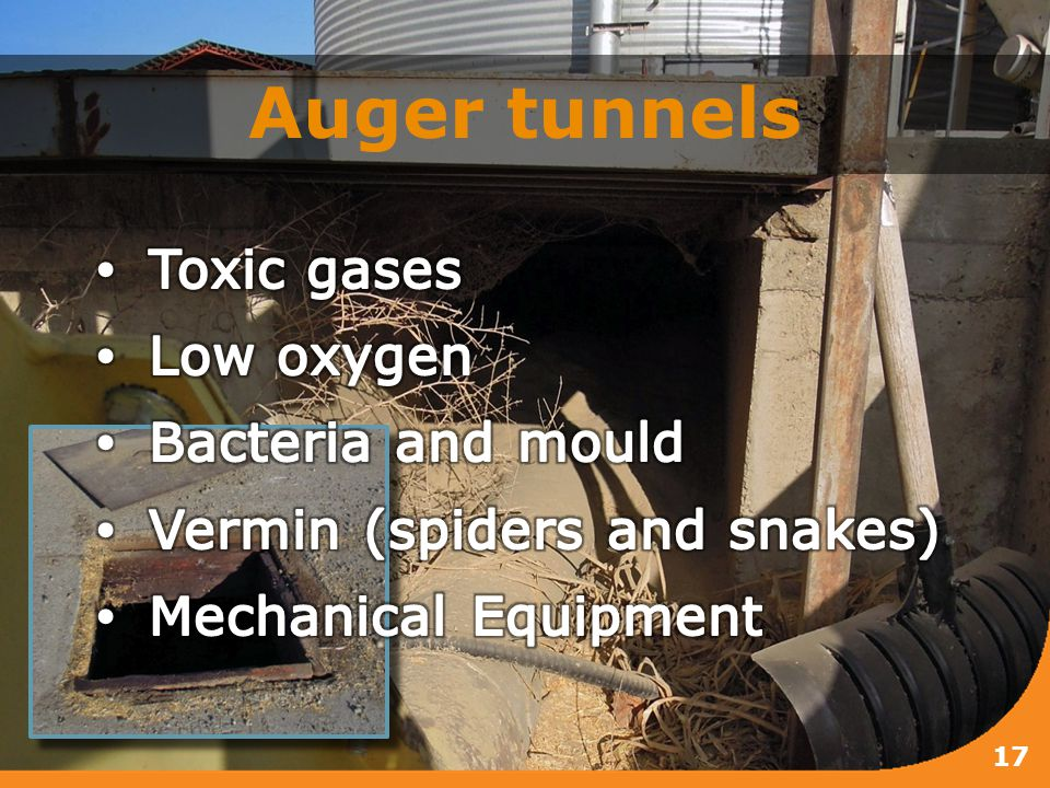 Auger tunnels 17