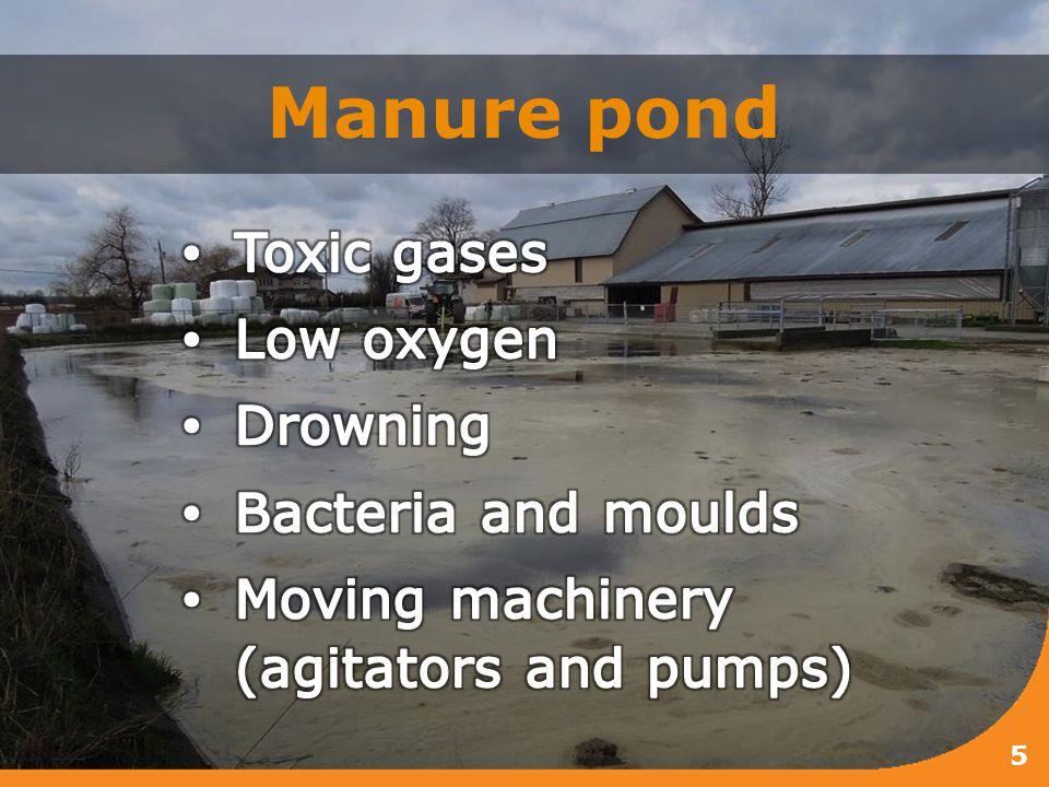 Manure pond 5