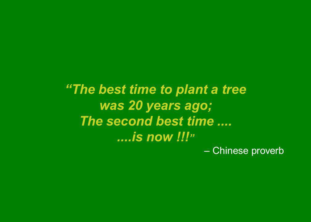 The best time to plant a tree was 20 years ago; The second best time........is now !!.