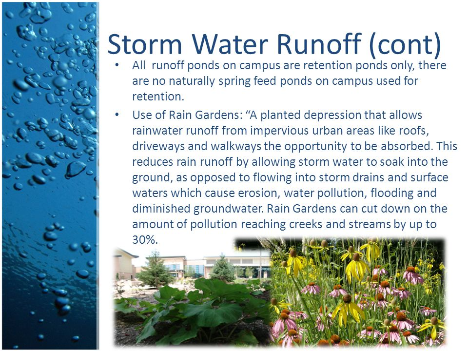 Storm Water Runoff (cont) All runoff ponds on campus are retention ponds only, there are no naturally spring feed ponds on campus used for retention.