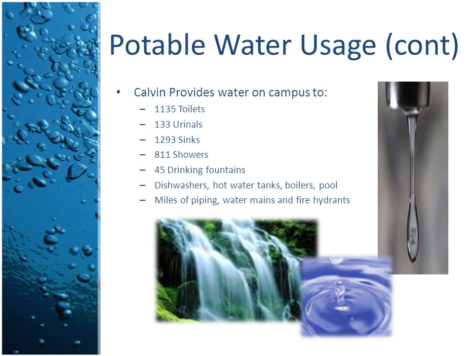 Potable Water Usage (cont) Calvin Provides water on campus to: – 1135 Toilets – 133 Urinals – 1293 Sinks – 811 Showers – 45 Drinking fountains – Dishw
